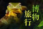 蜂格摄影师郑洋 走进探索自然博物之旅