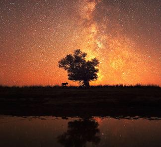 晚歌血色星空