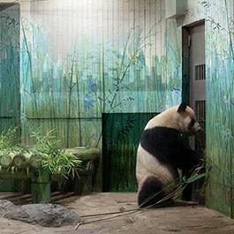 上海视觉艺术学院十四人联展