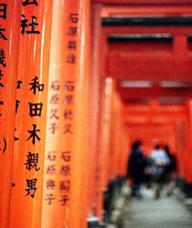 感受日本的精致与繁华